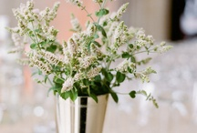 Floral Designs By Holly Heider Chapple Flowers / by Holly Heider Chapple Flowers Ltd.