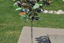 trees / by Carolyn Dube