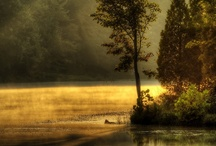 Art ~ Outdoors / by Rose Bud