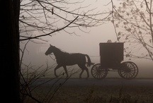 Amish Life / by Judy Carr