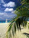 Vacation planning / by Tara Salsman