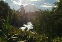 Arequipa, Peru / Nice pictures of the Arequipa region, Peru. Includes Arequipa, Colca canyon, etc... / by Hotel & Mirador Los Apus, Cusco (Cuzco), Peru