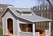 Dog house / by Anneke Degeest