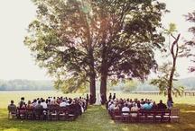 Wedding ideas / by deanne