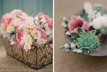 Flower's / by Irene Thut-Bangerter