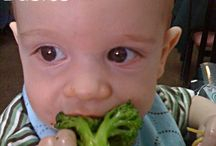 Baby Led Weaning / by Lindsay Marie