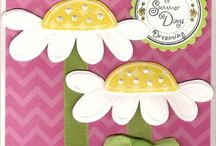 Lasting Impressions Cards / by Janie Wright