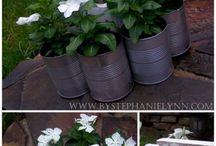 Garden Inspiration / by Rebecca Gilmour