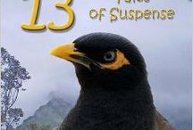 MYSTERY IN PARADISE 13 Tales of Suspense / 13 mystery short stories set in Hawaii, written by 13 local authors. / by Gail Baugniet