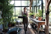 My Future / by Jessie Miller