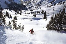 #Ski Holidays 2013 / by MyTravel Your Way