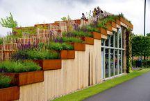Garden design / by Ania