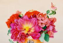 Flowers / by Clara Breitenmoser