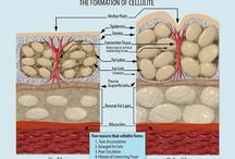 Cellulite / by G T