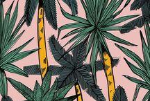 patterns / by Scarlet Tentacle