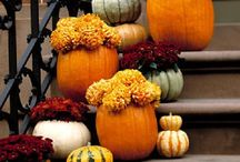 Fall decor / by Christan Phillips