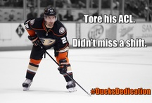 Infographics/Memes / A collection of various Ducks-related infographics and memes. / by Anaheim Ducks