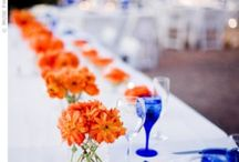 Wedding / by Erika Linzmeier