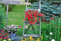 Outdoors - For the Yard / by Stephanie @ The Cozy Old Farmhouse