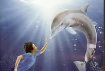 Dolphin Tale / by Caroline Chesson
