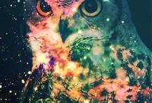 Art.  / by Crysta Casie