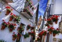 España / by Melanie Wilson