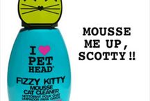Cat Grooming / Grooming products for cats available at PetCraftStore.com. / by PetCraftStore.com