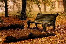 Places I'd like to sit for a while / by Ruthann Moore