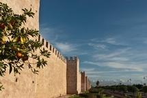 My Marrakech / by Cocoon Riad à Marrakech