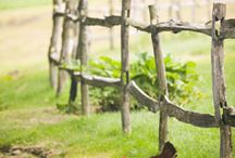 RUSTIC FENCES an GATES / by Dick N Jan Breedlove