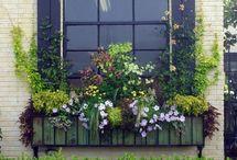 Window/planter boxes / Fill it with flowers / by Debbie Lachenmeier Cecak