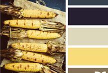 Paint colors / by Susan Deese