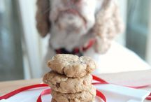 My Dogs treats & Stuff / by Catherine Scannell Rowe