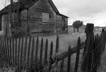 Halloween ideas / by Leslie Tarver
