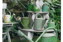WATERING CANS / by Di Van Poppelen
