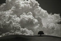 Clouds, Storms, & Rainbows / Clouds & Rainbows / by . Light