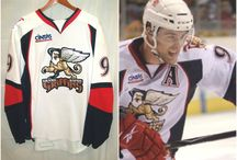 Grand Rapids Griffins / Some pieces from our very own collection, along with other pieces that we would like to share in support of our local champions / by Grand Rapids Public Museum