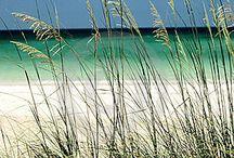 Beaches / by Ines Schmook
