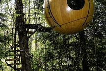 1000sassa tree houses / by Gerold Brenner