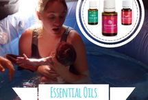 Young Living Oils / by Lauren Kunz Chateauneuf