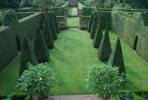 Garden / by Frazier + Wing