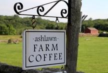 Ashlawn Farm Coffee / by Connecticut Food & Wine