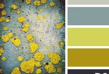 Color Palettes / by Angie T