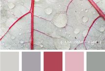 colourways / by Carin Cronje'