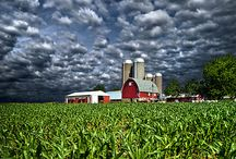 Country/Farm life / by Shania Hedrick
