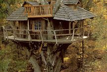 Treehouses / and other off-the-ground buildings, etc. / by Artstamper1