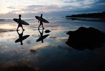 Surfing / by Anthony Bernardino
