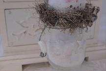 Christmas Decor / by Tammy Meche
