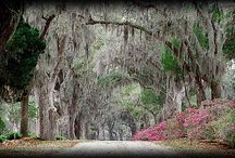 coast - photography ideas / by Angela Franklin