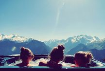 TurboTax Favorites: Tax Time relaxation  / How do you relax while you're doing your taxes with TurboTax? / by TurboTax